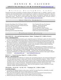 Sample Resume Business Owner Adorable Resume Of A Business Owner 48 Example Quintessence Entrepreneur