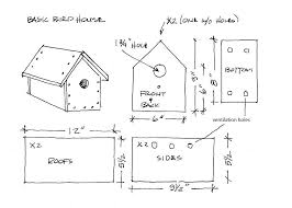 bird house plans by species awesome build a simple birdhouse it s
