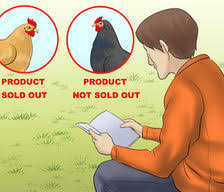 Chicken Egg Production How To Articles From Wikihow