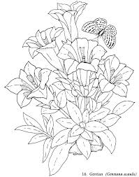 Beautiful Coloring Pages Pretty Flowers Coloring Pages Adult