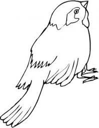 Small Picture Top 20 Free Printable Bird Coloring Pages Online Kids colouring