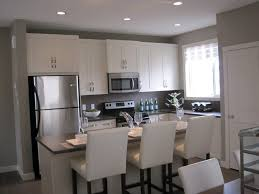 Of White Kitchens Unique White Kitchen Stainless Appliances Your Options Are But
