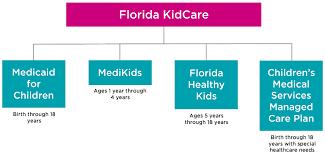 Florida Medicaid Income Limits Chart 2018 Florida Kidcare Offering Health Insurance For Children