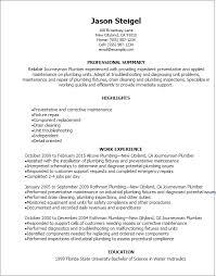 Resume Templates: Journeymen Plumber Resume