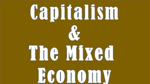 difference between capitalism and the mixed economy  difference between capitalism and the mixed economy
