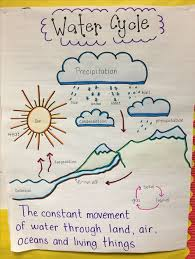 List Of Water Cycle Anchor Chart Kindergarten Pictures And
