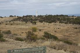 Image result for Pics of Marino Rocks Lighthouse.