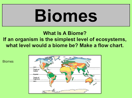 What Are Biomes Biomes Jpsaos