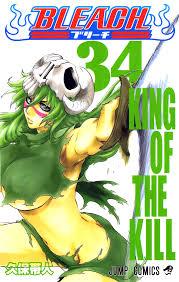 Bleach 34 King Of The Kill
