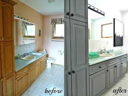 best sherwin williams paint inspirations including stunning for kitchen cabinets ideas cans