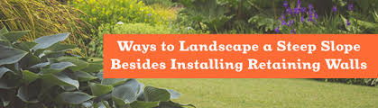 ways to landscape a steep slope besides