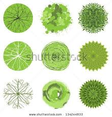 trees top view stock vector awesome office table top view shutterstock id