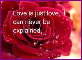 Beautiful Images Of Flowers With Love Quotes Best of Unbelievable Rose With Love Quotes Ohidul Me Image For Good Morning