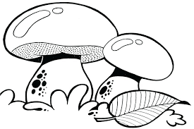 mushroom coloring pages trippy drawing at getdrawings com free for personal use