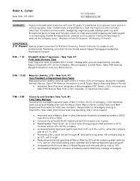 sales associate resume sample   free samples   examples  amp  format    sales associate resume sample