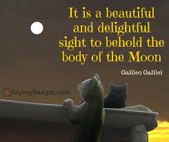 Beautiful Sight Quotes Best Of 24 Beautiful And Unforgettable Moon Quotes SayingImages