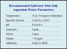 Saltwater Aquarium Water Parameters Aquatic Experts