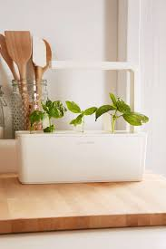 Garden To Kitchen Click And Grow A Miniature Herb Garden For A Kitchen Countertop