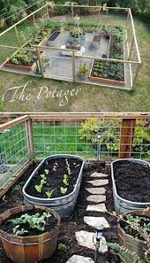 use metal trough as container for vegetable garden and install a path between your veggies
