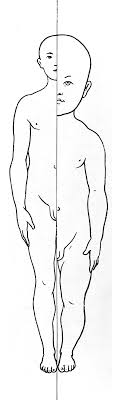 variation of proportion with age when attempting to draw