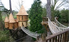 Canopy Living The Ultimate Tree House «TwistedSifterCoolest Tree Houses