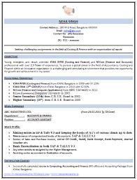 Tally Experience Resume Format Resume Invoice