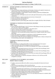 Commercial Portfolio Manager Resume Samples Velvet Jobs
