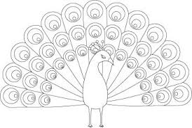 Small Picture Pretty Peacock Coloring Page For Kids Coloring 14478