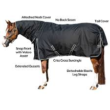 Horse Turnout Blanket Size Chart Stormshield Blizzard Combo Turnout Sheet In Euro Fit At