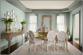 Painting My Living Room Light Paint For Living Room Solispircom