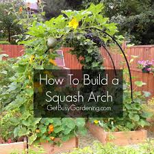 Small Picture How To Build A Squash Arch Easy diy projects Gardens and Garden