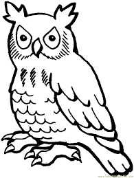 Absolutely Ideas Coloring Pages Draw An Owl Free Printable Owl ...