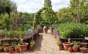 vegetable garden and what to grow