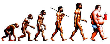 Evolution of man?
