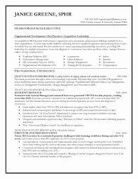 Public Service Resume Objective Expensive Customer Service Resume