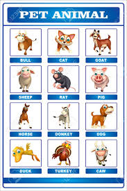 Pet Animal Picture Chart Stock Illustration