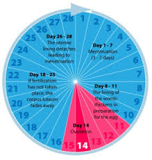 Menstrual Cycle Moon Chart Lunar Calendar Future Forward