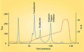 Ion Exchange Chromatography Lsr Bio Rad