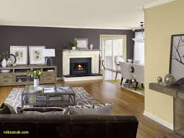 fullsize of sightly small living room accent wall colors that go beige brown accent walls accent