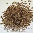 hemp seeds without thc