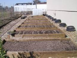 Small Picture Fall and Winter Vegetable Planting Guide