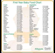 Pin By Lourian Johnson On Good To Know Baby First Foods