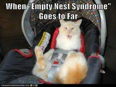 Empty Nest aka Lonely Bird Syndrome on Pinterest | Empty Nest ... via Relatably.com