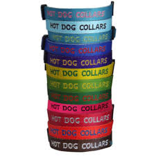 Personalized Embroidered Dog Collar 100 Guarantee