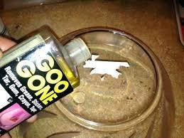 get sticker off glass remove sticker glue removing sticker glue off glass sticker for glass door get sticker off glass