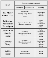 Expert Army Fitness Test Score Chart Airforce Pt Test