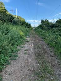 JCXC: Rayburn Trails AKA Colton Road Conservation Area (Millbury, MA)