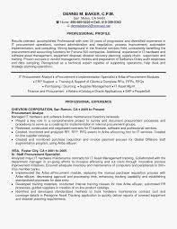 Cv Procurement Manager Resume Format Beautiful Stylish Template
