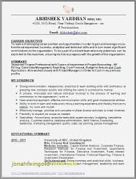 30 Awesome Resume Examples For Director Of Finance