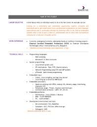 NAME OF THE STUDENT CAREER OBJECTIVE A brief about what an individual wants  to do in ...